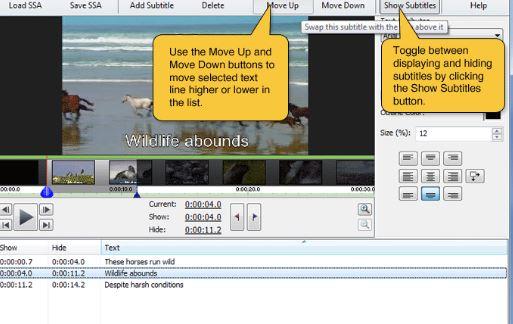 VideoPad Subtitle Maker